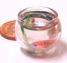 1:12 scala pesce in un bicchiere ciotola DOLLS HOUSE miniatura Accessorio Acquario g40koi