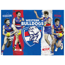 1000pc AFL Western Bulldogs 4 Player Licensing Essentials