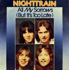 """7"""" Nighttrain When You Walk in the Room CV searchers/Jackie de shannon CBS 1980"""