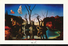 POSTER : ART: SWANS REFLECTING ELEPHANTS  by  S. DALI - FREE SHIP #AP596  RC53 P