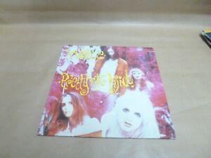 "Hole pretty on the inside 12"" vinyl."