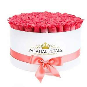 Coral Roses That Last A Year - Deluxe Rose Box