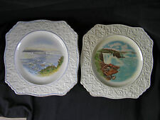 2 Vintage Souvenir Plates, Niagara Falls, Royal Winton, Grimwades, England