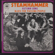 STEAMHAMMER: Autumn Song 45 (France, PS w/ sm wobc) Rock & Pop