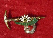Salzburg Souvenir Pin Brooch