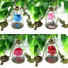 Dried Flower Rose Glass Bottle Charm Women Necklace Jewelry Beauty And The Beast