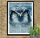 Night Owl Big Eyed Owl in the Night Dictionary Art Print Unique Owl Lover Gift