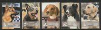 Australia 2008 : Working Dogs - Set of 5 x 50c Stamps, Mint Never Hinged