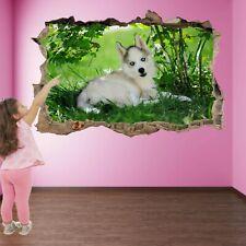 Husky siberiano perro Pared Arte Calcomanía Pegatinas Mural Impresión Niños Dormitorio Decoración FP30