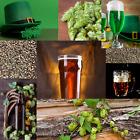 1 Gallon Nano-brew   Lucky Leprechaun Irish Red Ale [Partial Mash] Recipe Kit