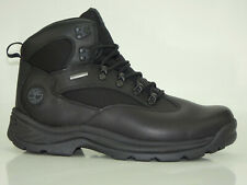 Timberland Chocorua Boots Timberdry Hiking Men Shoes 18193
