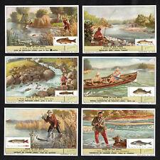 Freshwater Fishing Vintage Card Set 1955 Liebig Angling Rod Reel Salmon Pike