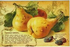 FOOD ART Still Life Old Recipe for Pear Compote New Russian Postcard