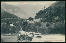 Goat shepherd in Aubisque mountain France original old 1910s postcard