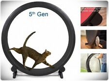 Indoor Cat Exercise Wheel Kitty Running Training Toy Treadwheel Treadmill Pet