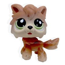 #2141 Rare Littlest Pet Shop Wolf Brown Tan Husky Timberwolf Green Eyes Dog LPS