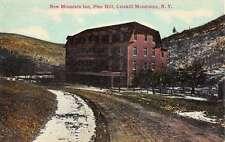 Catskill Mountains New York Pine Hill New Mountain Inn Antique Postcard K23202