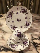 Rare England Aynsley Bone China Violette Flowers Coffee Tea Cup Saucer Trio Set