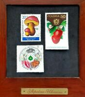 Old Stamps Collection Vintage Postage Stamps Lot Rare Stamp Flowers USSR Botany