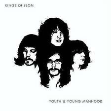 Import 33RPM Speed Kings of Leon Alternative Rock LP Records