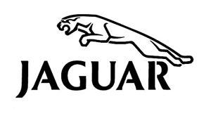 high detail airbrush stencil   jaguar FREE UK POSTAGE
