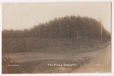 The Pines Tadworth Surrey RP Postcard B749