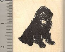 Newfoundland Dog rubber stamp H11001 WM