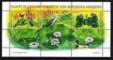 Moldavie 2008 plantes moldaves Yvert bloc n° 41 neuf ** 1er choix
