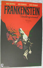 Frankestein Underground SIGNED Lithograph Mike Mignola From the pages of Hellboy Comic Art