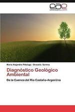 Diagnóstico Geológico Ambiental: De la Cuenca del Río Castaño-Argentina (Spanish