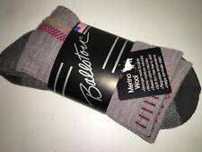 Ascend hiker crew socks women Large Merino wool hiking socks Bass Pro  Ballston