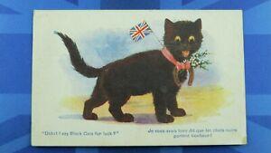 WW1 Inter Art Donald McGill ? Comic Postcard DIDN'T I SAY BLACK CATS FOR LUCK