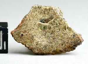 Meteorite NWA 10505 - Achondrite Diogenite protogranular olivine bearing 2.49g