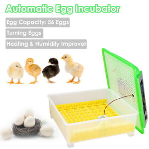 56 Egg Incubator Digital Chicken Hatcher Turner Automatic Temperature Control