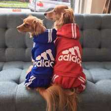 Dog Warm Winter Hoodie Jumpsuit Cute Pet Dog Clothes Spring Dog Hoodies Coat