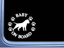 "Baby on Board American Bully Cropped L473 6"" pitbull Sticker decal"