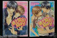 JAPAN Naduki Koujima manga: ShinshiKyoutei wo Musubou! 1+2 set
