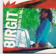 Birgit-Everybody Wants To Be cd single