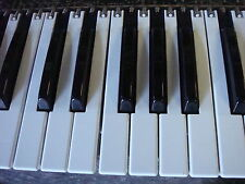 Touche Clavier KEYS Parts Keyboard ROLAND D-50 D50 JX-10 Alpha Juno1 JUNO-2 KR