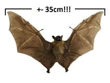 Awesome Vampire! Real bat. +-35cm!!! Taxidermy. Wicca Spell Ritual