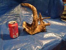 New listing # 481 Driftwood Aquarium Reptile Taxidermy Driftwood