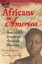 Africans in America: AMERICAN (AMERI)ca's Journey through Slavery