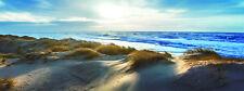 Bilder Wandbild Glasbild  Strand Dünen Meer Gräser 30X80 cm Art.3080984