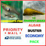 LIVE MOSQUITO FISH Malaysian TRUMPET SNAILS  Aquarium Pond Feeder Fish Snail