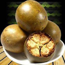 10Pcs Siraitia Grosvenor Luo Han Guo Tea Seeds Herbal Monk Fruit Garden Plant---