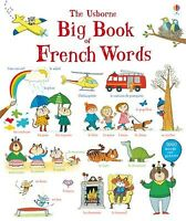 Usborne Big Book of French Words for Kids Learn French Easy French