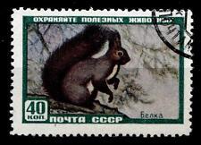 Sibirisches Eichhörnchen. 1W. Gest. UdSSR 1959