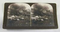 WWI Stereoview Card US Supply Train Bombed Enemy Plane