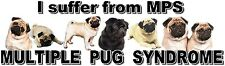 """I Suffer from  MULTIPLE  PUG  SYNDROME"" Dog Car Sticker by Starprint"