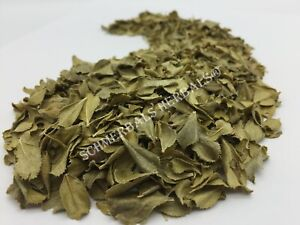 Buchu Leaf, Agathosma betulina, Organic ~ Sacred Herbs from Schmerbals Herbals
